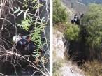 Rescatan Bomberos de Hidalgo a perro que cayó en tiro de mina3