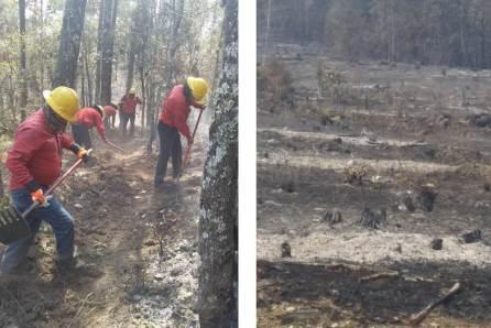Incendio consume más de 90 hectáreas en San Agustín Metzquititlán