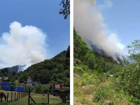 Coordinada y eficaz atención de Semarnath ante incendios forestales