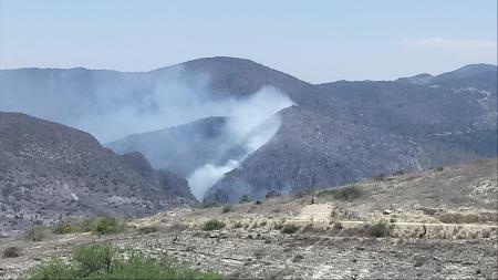 Coordinada y eficaz atención de Semarnath ante incendios forestales2