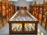 Mantendrá UAEH abiertas sus exposiciones en vacaciones2