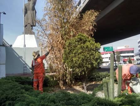 Realiza SOPOT trabajos de limpieza en distribuidor vial Miguel Hidalgo1