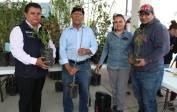 Entregan más de 3 mil árboles frutales en Mineral de la Reforma 2