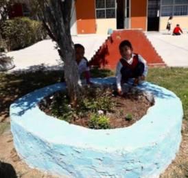 Escuelas de Hidalgo se suman a Jornada Nacional de Limpieza y reforestación de espacios1