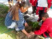 Escuelas de Hidalgo se suman a Jornada Nacional de Limpieza y reforestación de espacios2