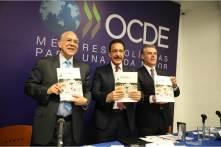 Hidalgo, el estado más seguro del centro del país, OCDE5