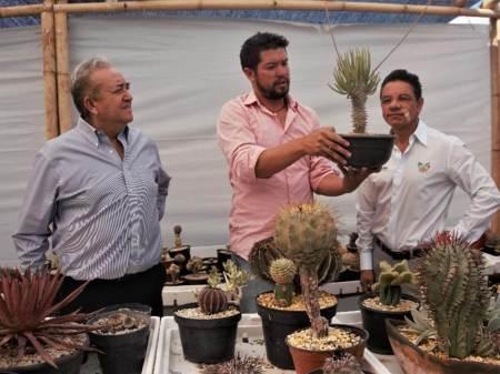 Inauguran en Pachuca un invernadero y jardín botánico
