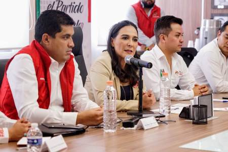 No queremos que los jóvenes del PRI aprendan una disciplina equivocada, Erika Rodríguez2