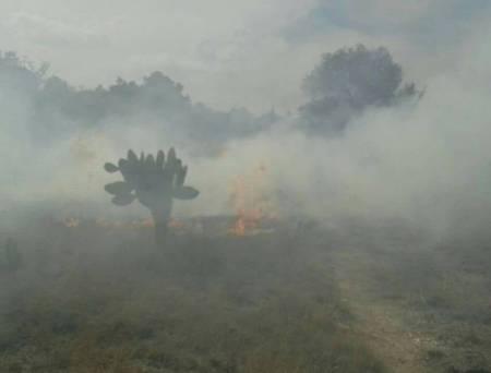 PC Tizayuca hace un llamado a evitar incendios forestales1