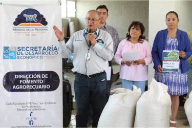 Realiza Mineral de la Reforma 2da. entrega de incentivo de semilla de avena y cebada a pequeños productores2
