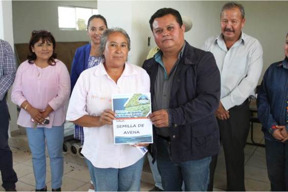 Realiza Mineral de la Reforma 2da. entrega de incentivo de semilla de avena y cebada a pequeños productores4
