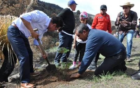 Hidalgo Siembra Contigo al rescate de las áreas afectadas por incendios forestales 1