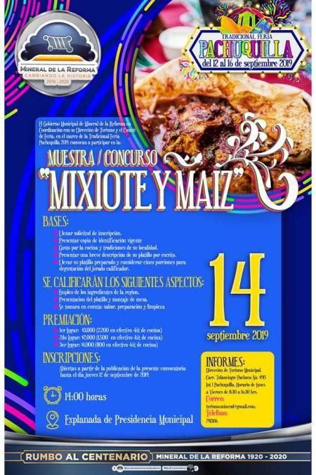Presentan programa de actividades de La Tradicional Feria Pachuquilla 2019-3