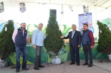 Entrega Mineral de la Reforma más de 360 árboles de navidad a bajo costo2