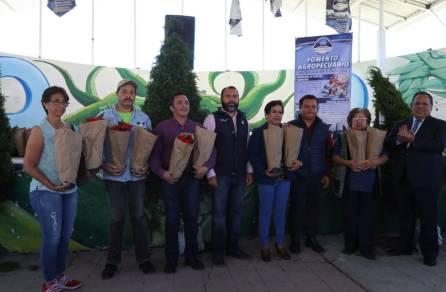 Entrega Mineral de la Reforma más de 360 árboles de navidad a bajo costo3