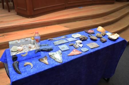 Fósiles son patrimonio natural de México2