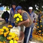 Saldo blanco durante operativo de Día de Muertos 2019 en Mineral de la Reforma6