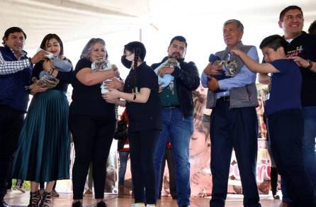Presentan a los cuatro tigres nacidos en el Centro de Rescate Animal del Bioparque de Convivencia Tizayocan4
