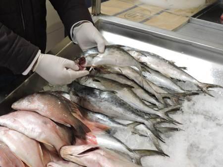 Emiten medidas a tomar en cuenta al comprar pescado en esta cuaresma