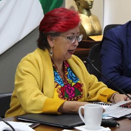 En respeto a feminicidio de la niña Fátima, Diputación Permanente guarda un minuto de silencio4