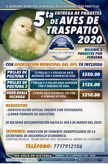 Incentiva Mineral de la Reforma avicultura de traspatio