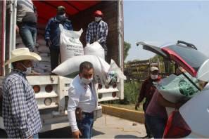 Ayuntamiento de Zempoala entrega a productores agrícolas costales de avena para la temporada de siembra