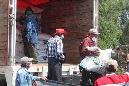 Ayuntamiento de Zempoala entrega a productores agrícolas costales de avena para la temporada de siembra4