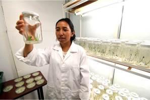 Doctorado en Ciencias en Biotecnología de la UPP obtiene el nivel 2 del PNPC del Conacyt_2