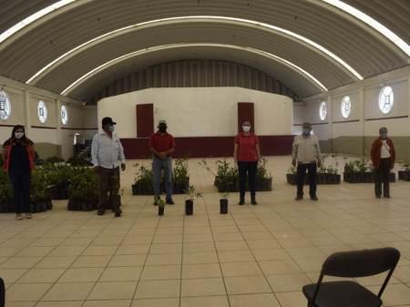 Realizan entrega de árboles frutales en Santiago Tulantepec