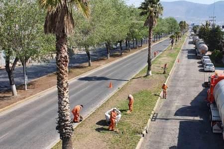 SOPOT realiza trabajos de mantenimiento en el bulevar Everardo Márquez