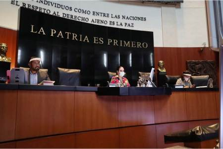 Bancadas del PRD y PES desaparecen del Senado2