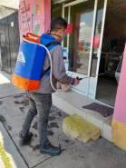 Continúan acciones de desinfección en colonias de Mineral de la Reforma2