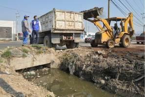 Continúan labores de mantenimiento de áreas verdes y rehabilitación de alumbrado público en colonias de Mineral de la Reforma