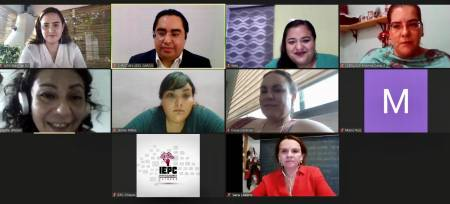 IEEH participa en Noveno Encuentro Nacional de Educación Cívica en modalidad virtual2