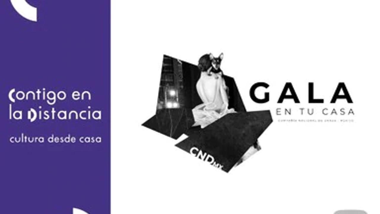 Disfruta en vivo Gala en tu casa, un repertorio dancístico con piezas clásicas y contemporáneas