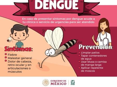 En lugares tropicales, IMSS recomienda evitar la picadura de mosquitos